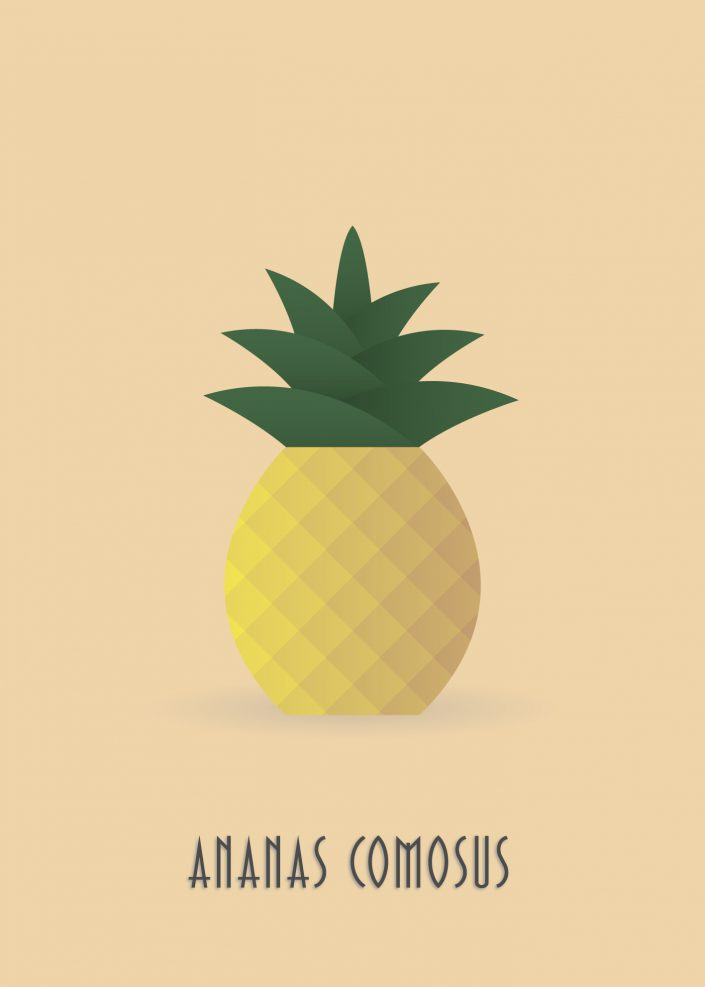 Papirfrugt - Pineapple